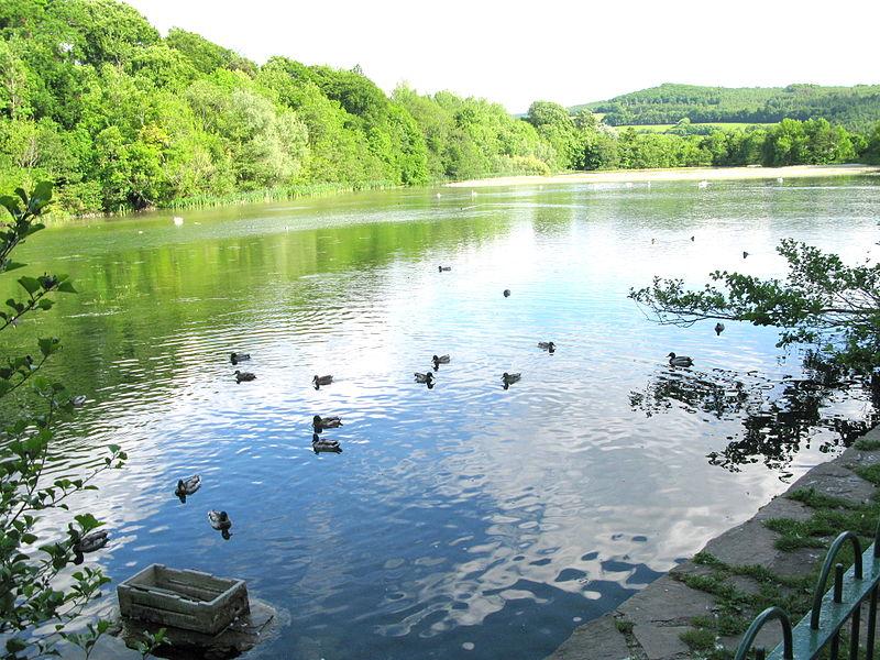 Marlfield Lake Clonmel
