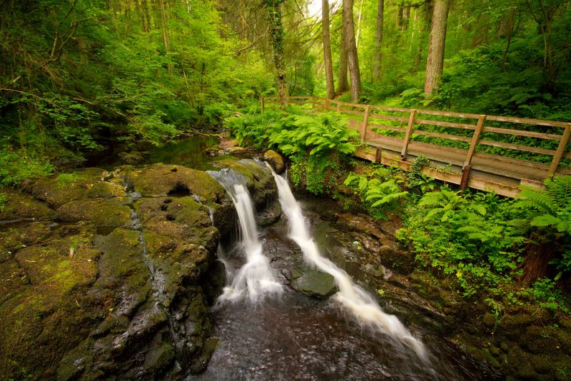Glenariff Forest Park County Amtrim